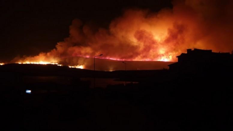 """-Başkan Oran yangın sonrası acı bilançoyu açıkladı ve ekledi:  'Yaklaşık 200 hektar alan yandı, İmara açılması söz konusu bile olamaz"""""""